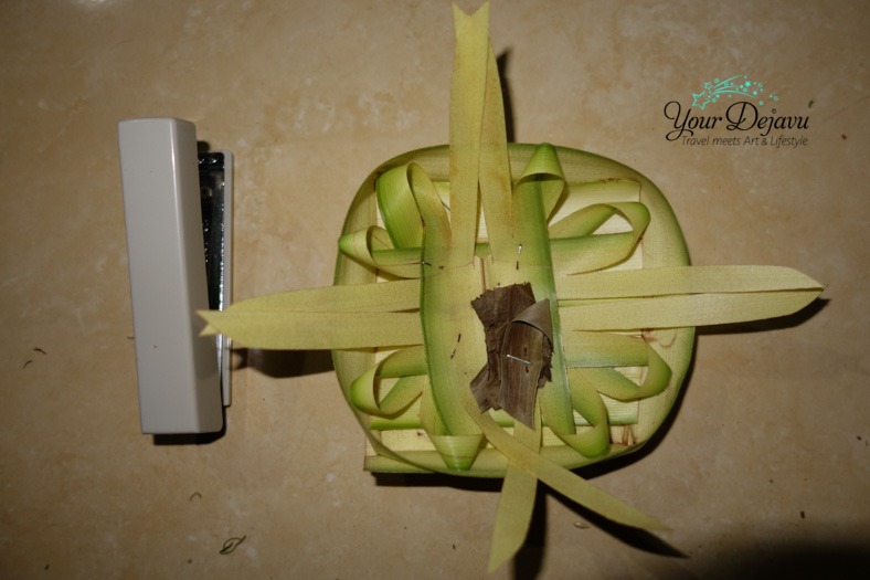 Palmenkörbchen 3